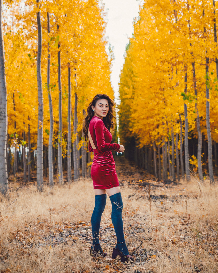 How to build the perfect fall wardrobe on a budget, affordable velvet dress, velvet trend for fall // Notjessfashion.com