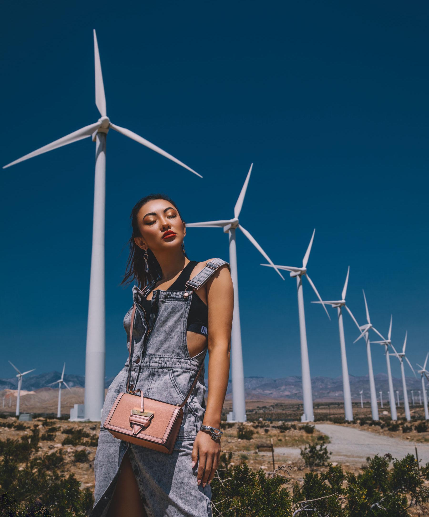 Bold Festival Style - Coachella Outfits Round Up, one teaspoon overall dress, loewe barcelona bag // Notjessfashion.com