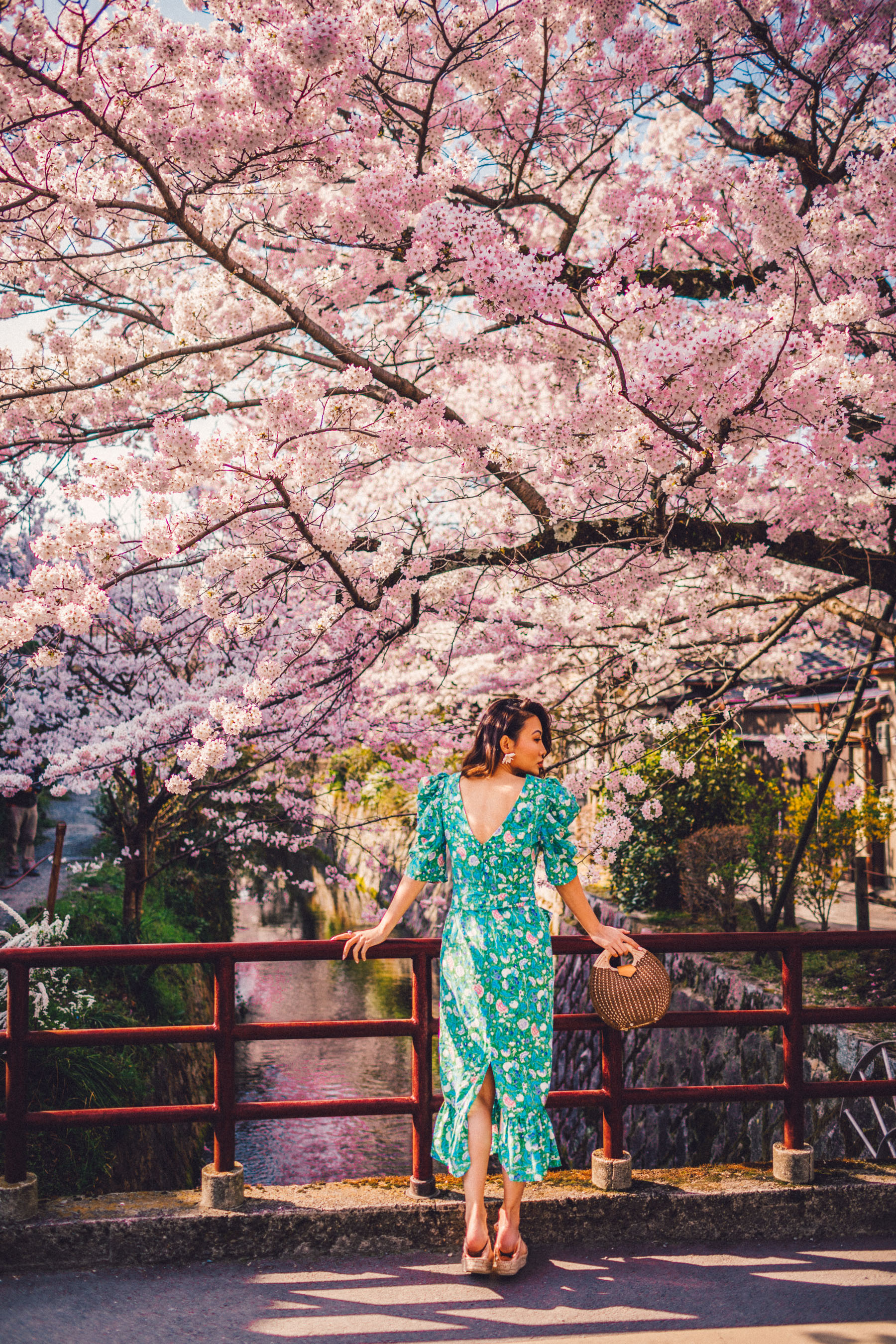 7 Best Spots for Cherry Blossoms in Japan - Kyoto - Philosopher Path, luxury travel blogger // Notjessfashion.com
