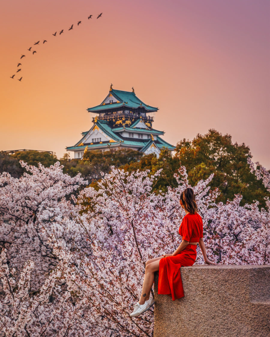 7 Best Spots for Cherry Blossoms in Japan - Osaka Castle, Japan Travel Guide, luxury travel blogger // Notjessfashion.com