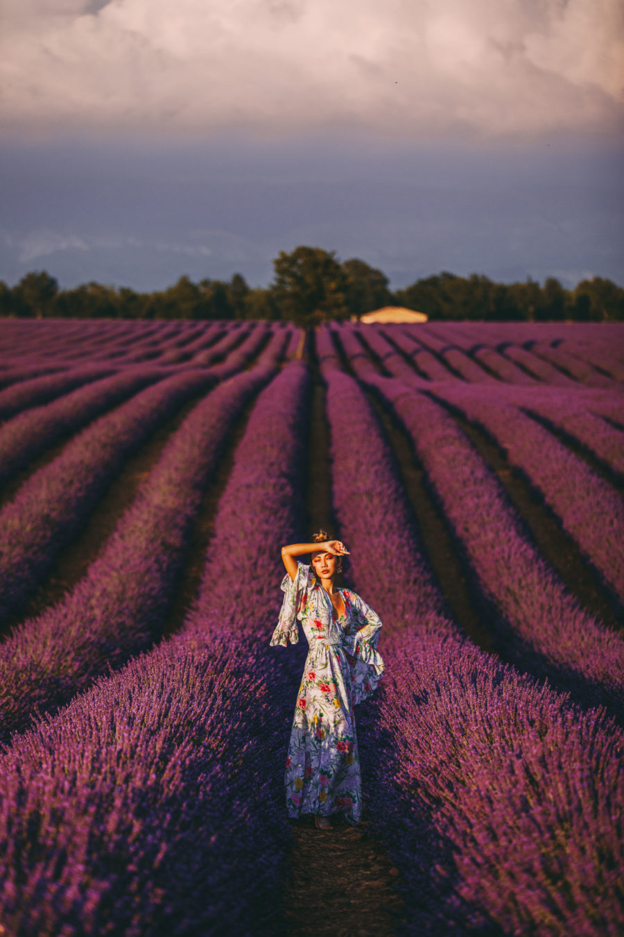 Lavender Fields of Provence // Notjessfashion.com